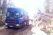 Грузоперевозки. Лесовоз Scania